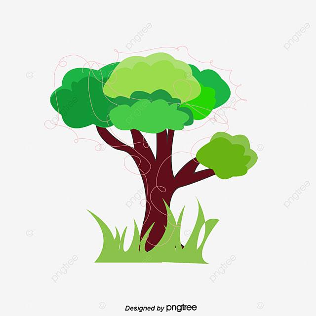 Plantas arboles plantas arboles los rboles planta for Arboles para plantar en invierno