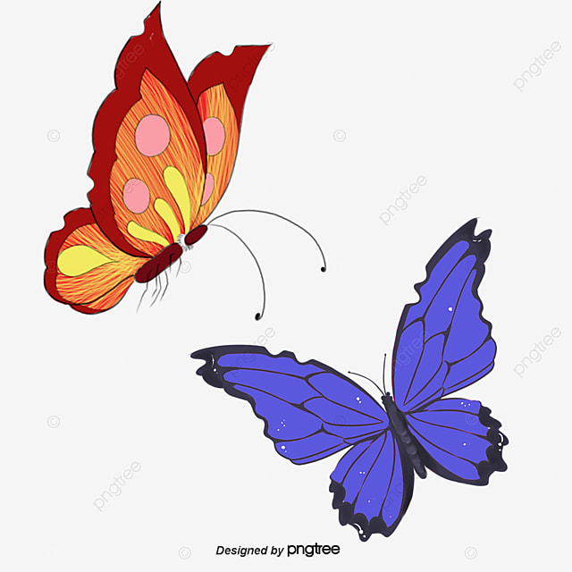 fun colorful butterfly vector beautiful animal in riotous profusion rh pngtree com free butterfly vector art free butterfly vector art