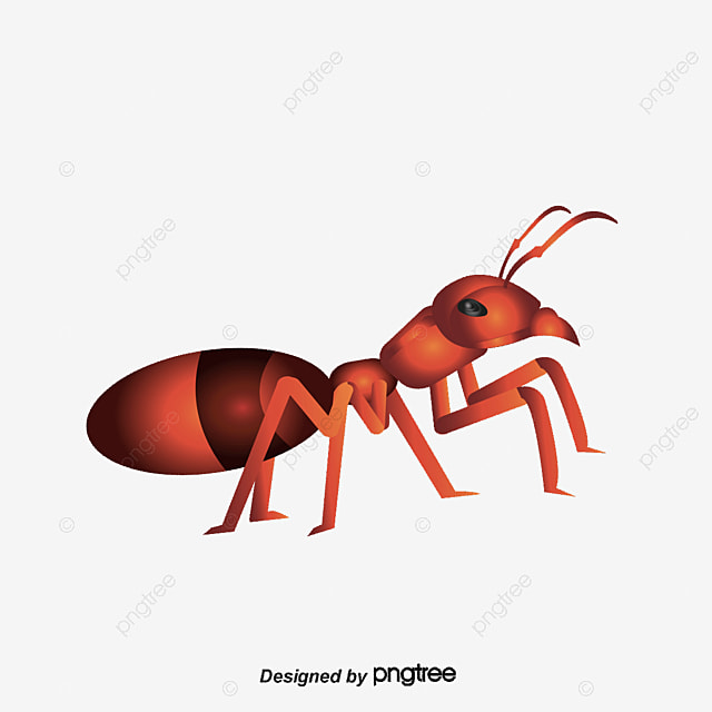 ants vector ant decorative ant material png and vector