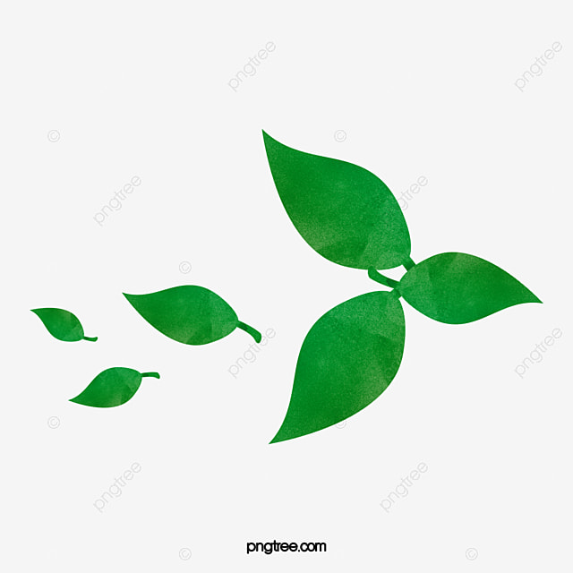 Green tea leaf green green tea tea png image and clipart for free green tea leaf green green tea tea png image and clipart thecheapjerseys Image collections