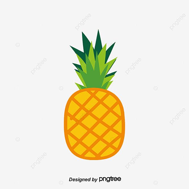 Ombrage De Fond Noix Coco Ananas Melon Gratuit PNG Et Vecteur