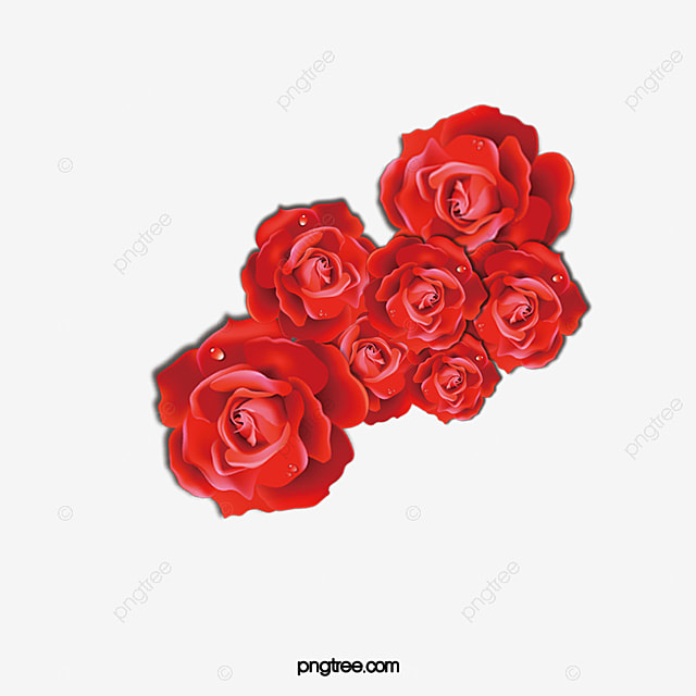 Red Rose Sea Rose Creative Vector Rose Sea Flowers Png And Vector