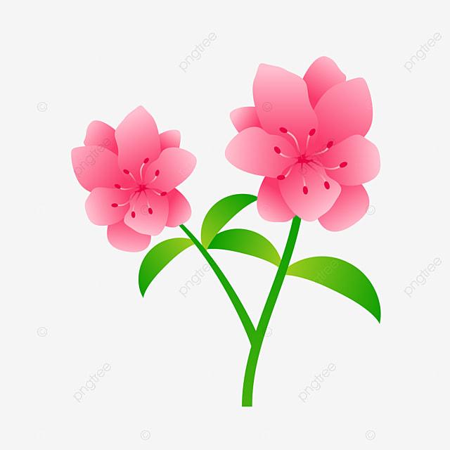 Cartoon Pink Flowers Cartoon Clipart Cartoon Png Image And Clipart