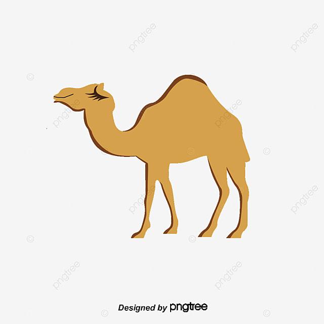 Dessin de chameaux dessin chameau d sert png et vecteur - Dessin de chameau ...