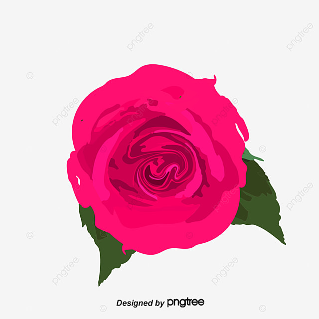 3d rose, 3d, Rose, Flower PNG and PSD