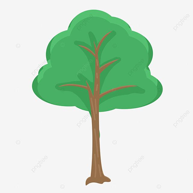 le ch u00eane de l herbe ch u00eane de l arbre vert fichier png et