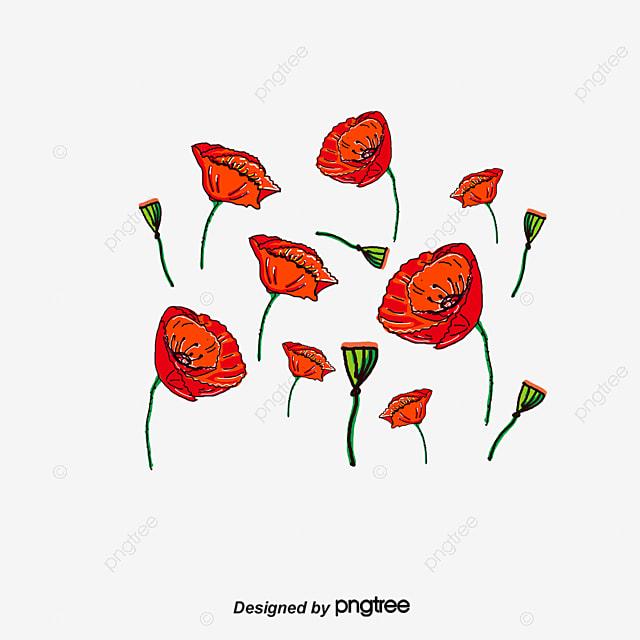 Vector Poppy Flower Flower Vector Cartoon Poppy Png And Vector