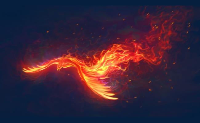 Golden Light Fire Phoenix Golden Light Flame Radiate
