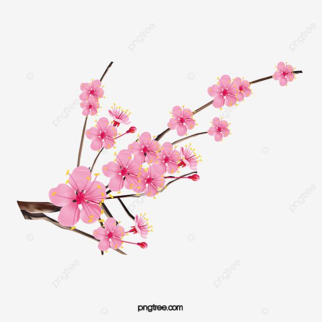 Tinta Flores De Cerezo Ramas Flores Pink PNG Y Vector Para