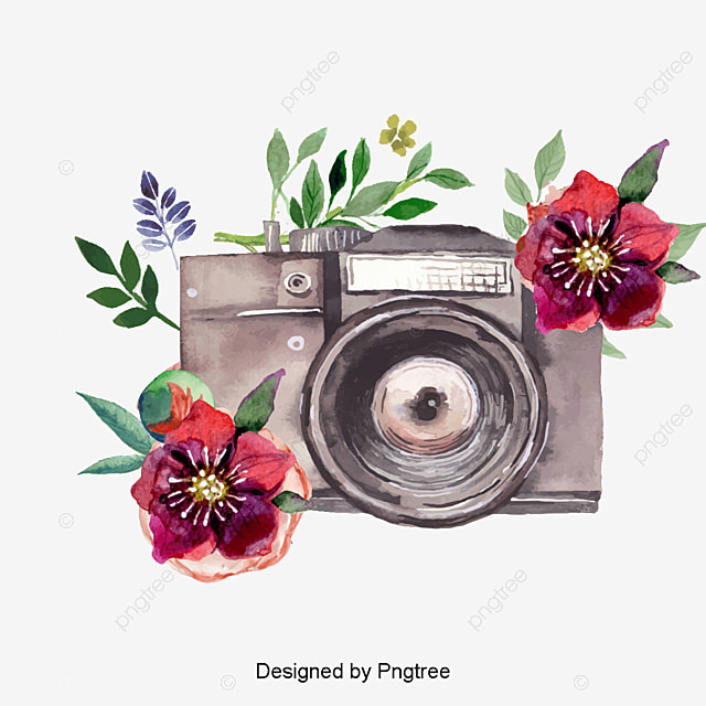 Watercolor Flowers Png Vector Psd And Clipart With: Beautiful Watercolor Hand Painted Camera Vector