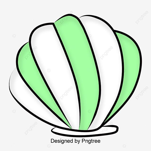 Blanc de dessins anim s de coquillages blanc dessin des - Dessin de coquillage ...