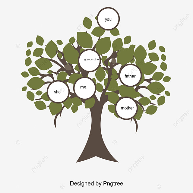 Family Tree Png Vectors Psd And Clipart For Free Download Pngtree