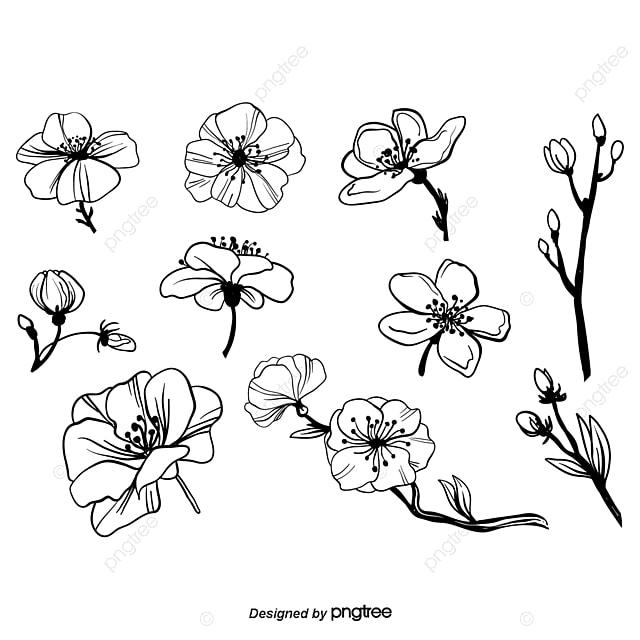 La Fleur De La Decoration De Tableau Blanc Et Noir Le Trace De Ligne