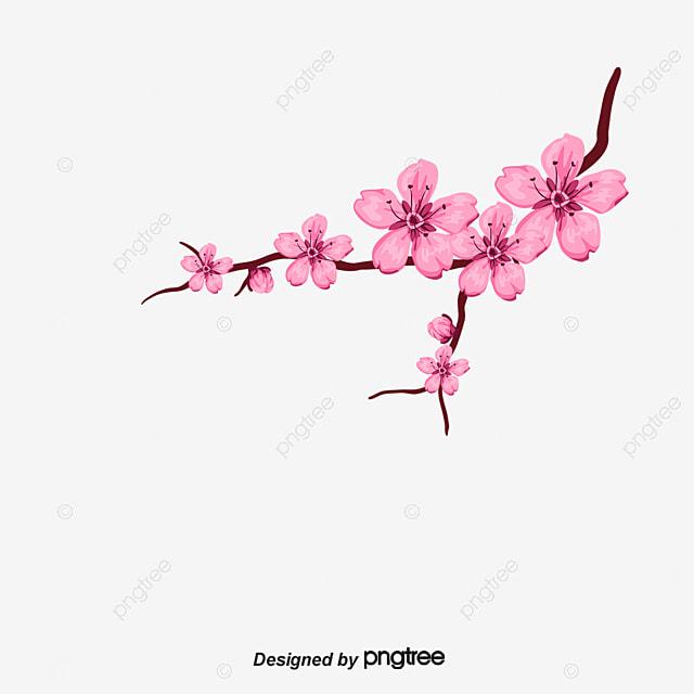 Pétalos De Cerezo Vector De Petalos Flores De Cerezo Pétalos De