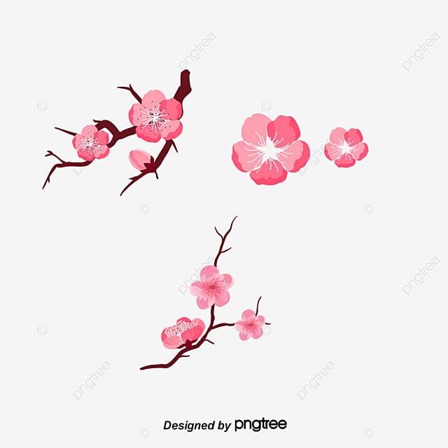 Vector Color Cherry Blossom Patron Decorativo De Japón Vector Flor ...