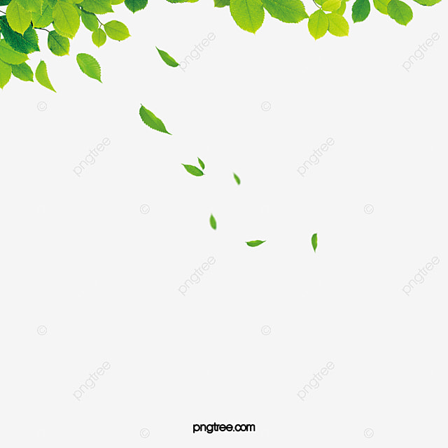 Image result for blowing leaves