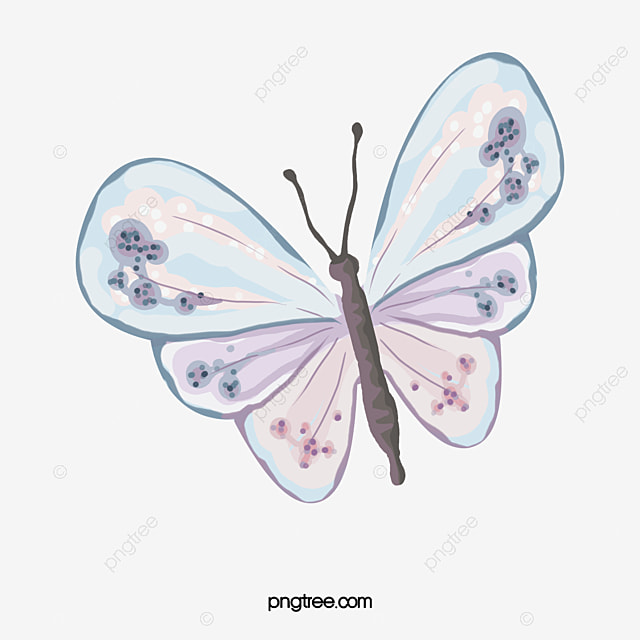 Watercolor Butterfly Png, Vector, PSD, and Clipart With Transparent