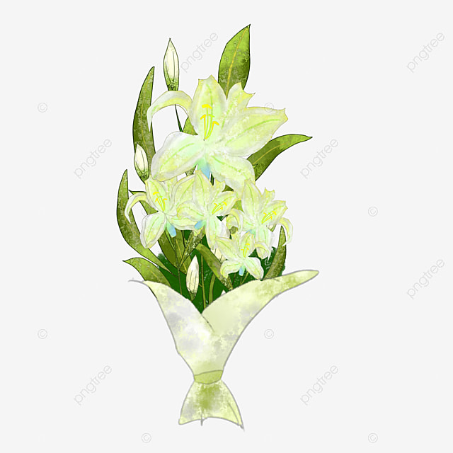 bouquet de fleurs de jasmin bud les p tales fleur de jasmin image png pour le t l chargement. Black Bedroom Furniture Sets. Home Design Ideas