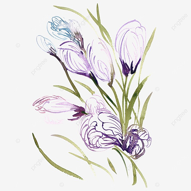 Watercolor Blue And Purple Transparent Flowers Flower PNG Image