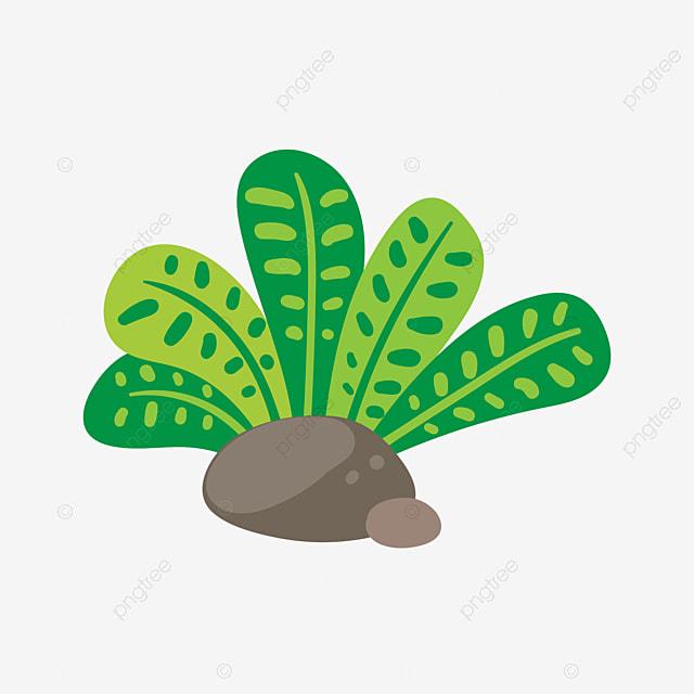 A Desert Desert Hot Desert Plants PNG Image And Clipart For - A hot desert
