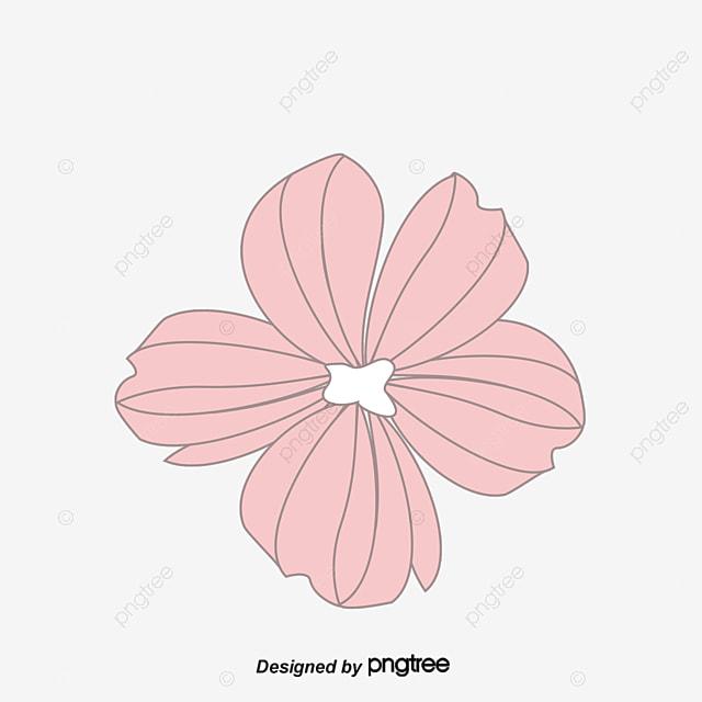 Pequeño Anillo Decorativo Florales, Vector Coronas, Flores ...