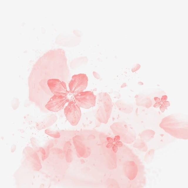 peach petals fall  peach clipart  petal  peach blossom png