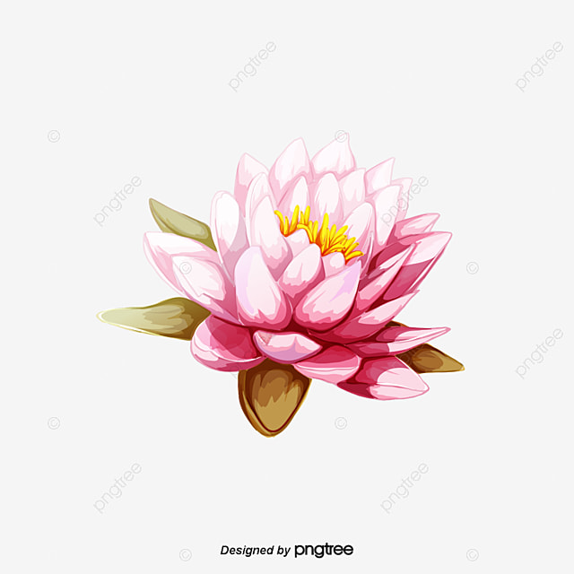 vector flor de loto rosa chino  vector lotus  loto rosa coming soon clipart free coming soon clipart images