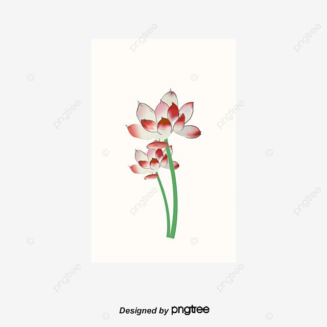 download 5d lotus flower - photo #22