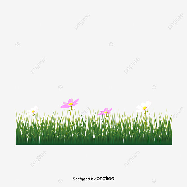Yellow Floral Grass Bottom Border Yellow Flowers On The