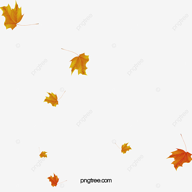falling leaves leaves falling down floating elements png image