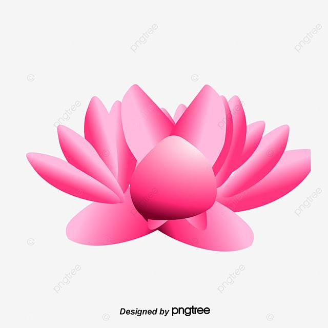 Pink lotus vector diagram lotus pink png and vector for free download pink lotus vector diagram lotus pink png and vector ccuart Choice Image