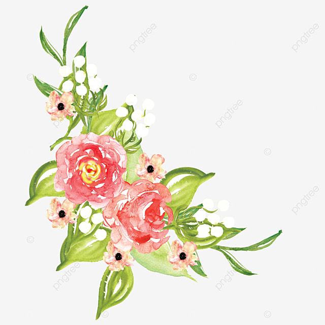 Vector De Flores Rojas Vector Rojo Flores Png Y Vector Para