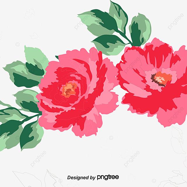 dibujos de rosas rose planta diseño archivo png y psd para descargar