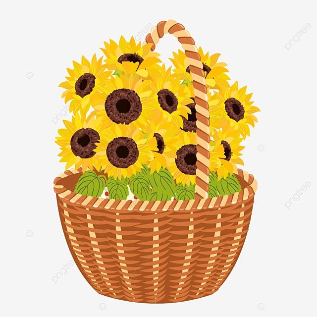Flower Baskets Vector : Lavender flower baskets vector material purple weave