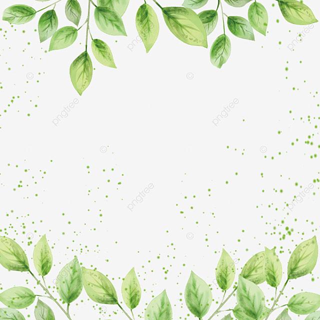 marijuana leaf border  in kind  green leaves png image and pot leaf polo shirt pot leaf polo shirt
