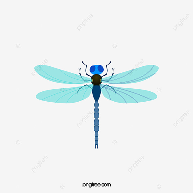 light blue dragonfly vector material insect beneficial insects rh pngtree com dragonfly vector format dragonfly vector free