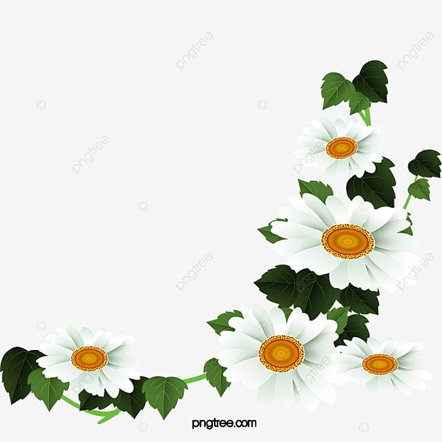 White Daisy Flower Decoration Pattern, Daisy Clipart ... White Daisy Flowers Clipart