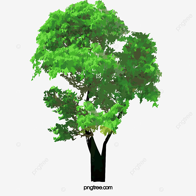 Tree Tree Tree Lush Tree Tree Clipart Tree Green Trees