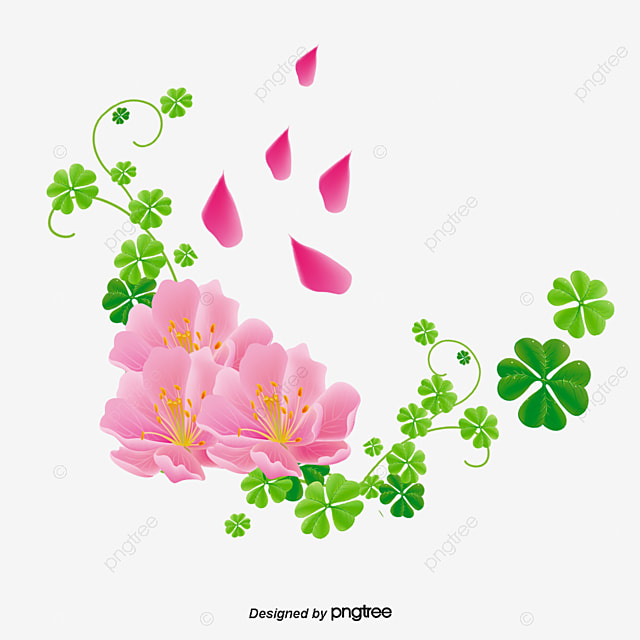 u00e9l u00e9ments de fleur de lys fleur de lys en mati u00e8re de fleurs