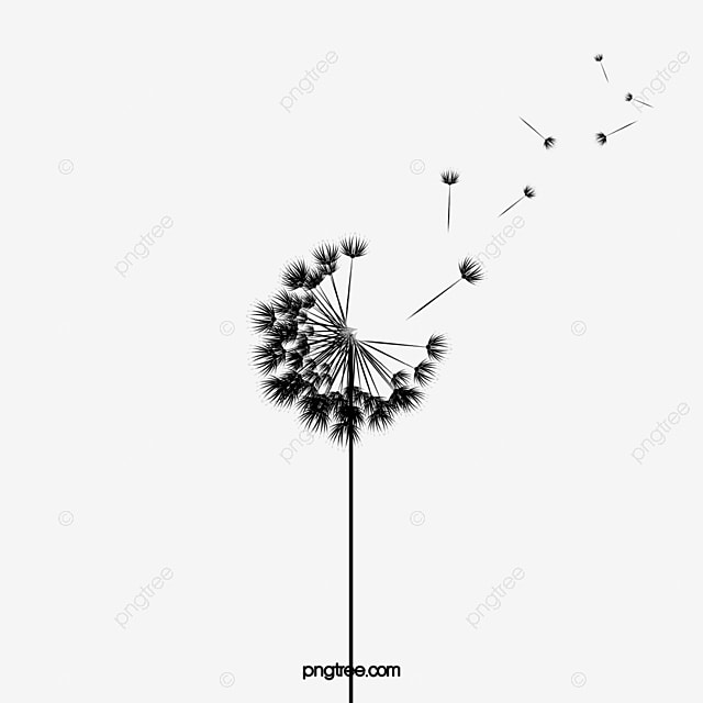 cartoon dandelion cartoon dandelion plant png image and clipart rh pngtree com dandelion clipart free dandelion clipart png