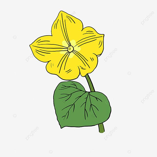 Yellow Flower Borders Flower Vector Letter Border Hand Drawn