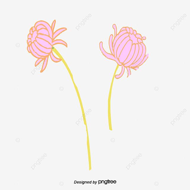 Rose Gerbera En Matiere De Vecteur De La Matiere Vegetale Fleur Rose