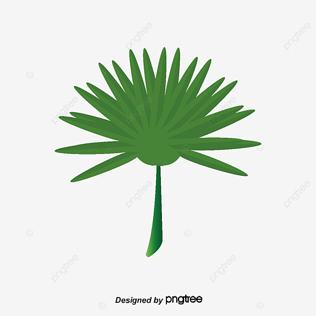 green palm leaves vector material green leaves palm tree png and rh pngtree com palm tree leaves vector palm tree leaf silhouette vector