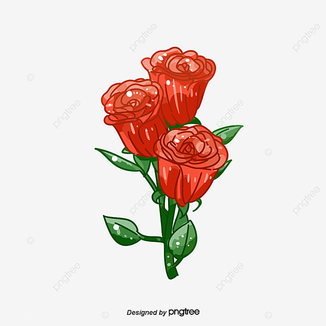 Roses Bouquets, Flowers, Bouquet, Roses PNG and Vector for Free Download