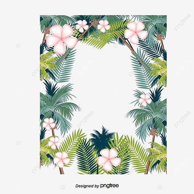Tropical White Flower Borders Vector Png Summer Party