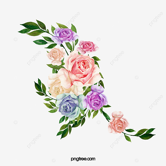 Beautiful Flower, Flower, Plant, Flowers PNG and Vector with