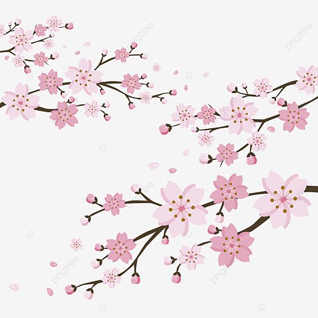 dessin de cerisier sakura de jeunes arbres les arbres d. Black Bedroom Furniture Sets. Home Design Ideas