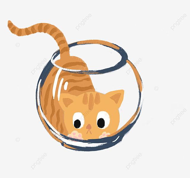 pet collar cat collar dog collar pet supplies png image and