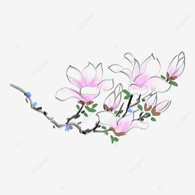 orchid flower download flower clipart butterfly flowers png image