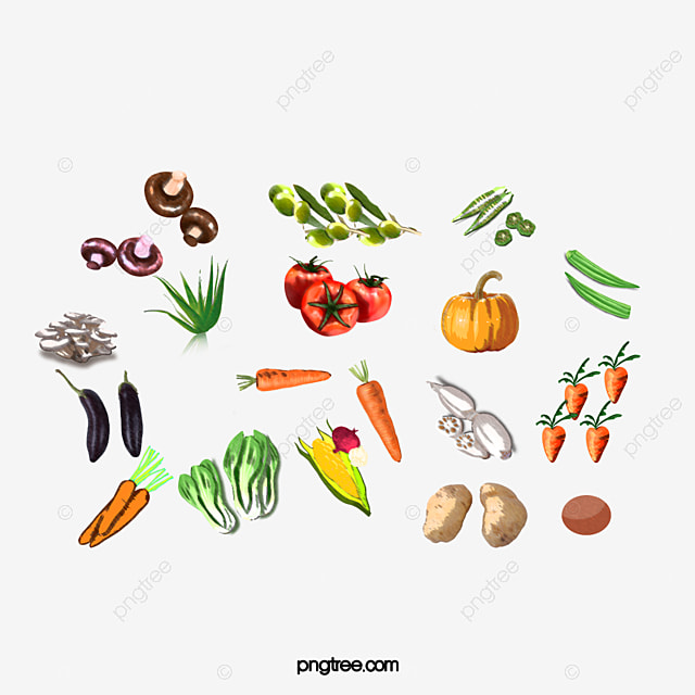 Watercolor Vegetables Watercolor Vegetables Color PNG Image and